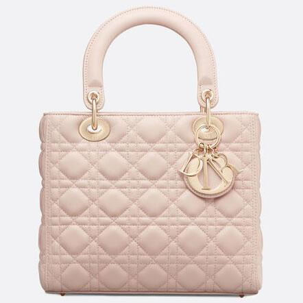 image of lady dior handbag
